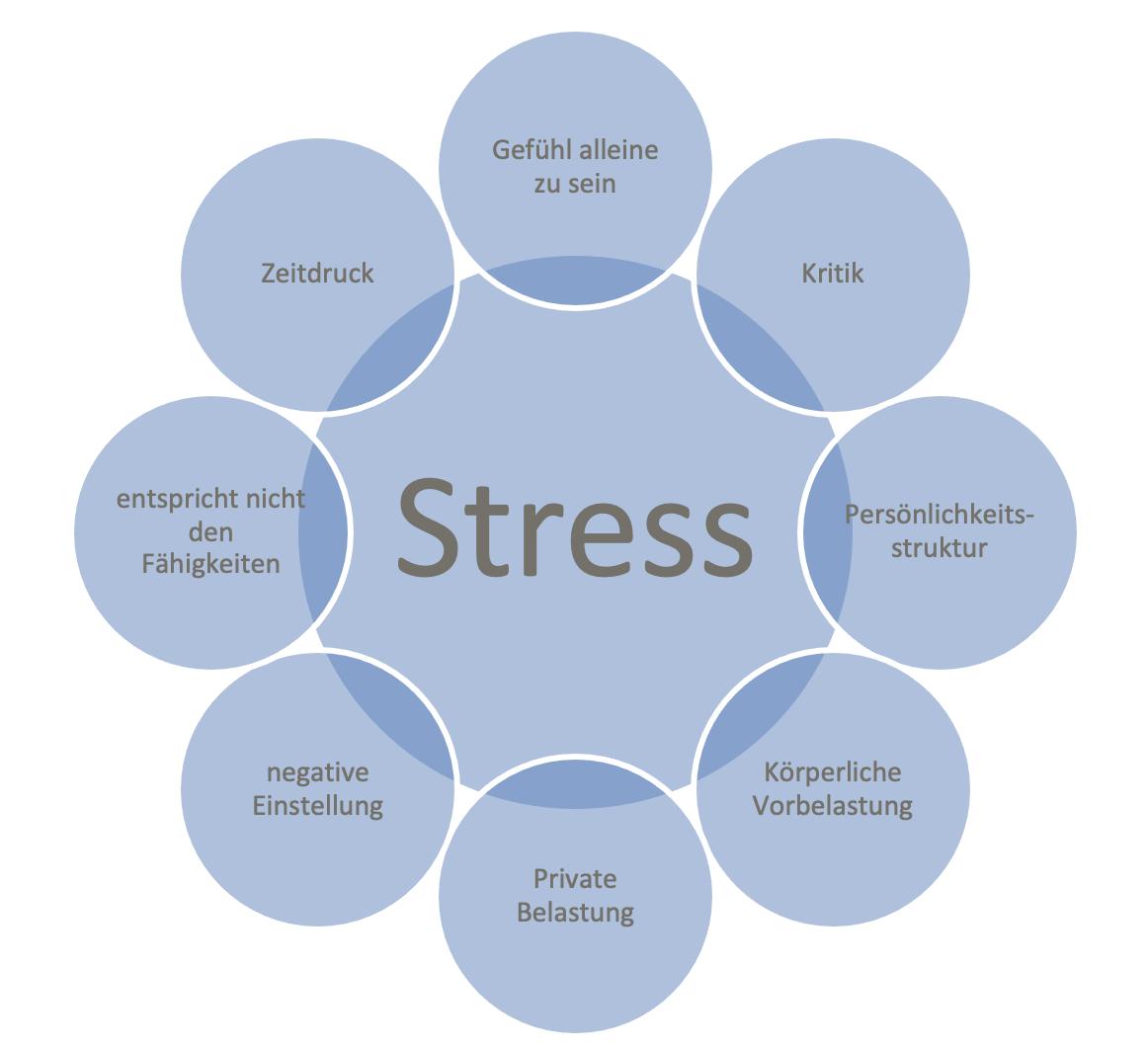 Einflussfaktoren auf Stress